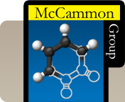 McCammon Group
